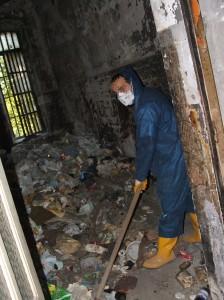Manicomio pulizia Mezcal 2006