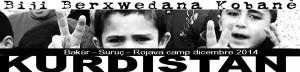 evidenza _kurdistan